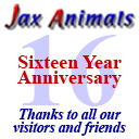 JaxAnimals 12 Year Anniversary