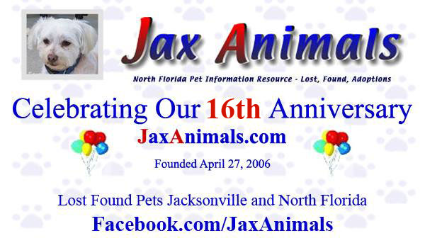 JaxAnimals 13th Aniversary