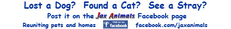Visit the JaxAnimals Facebook Page