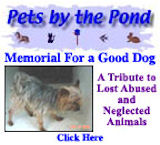 Memorial to a Good Dog